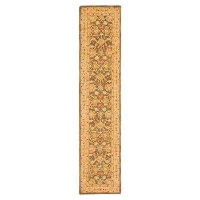 Anatolia Area Rug Rug Size: Runner 23 x 12