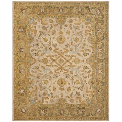 Anatolia Ivory/Brown Area Rug Rug Size: Rectangle 4 x 6