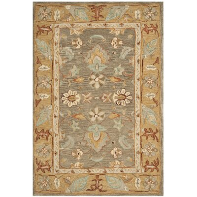 Anatolia Brown/Camel Area Rug Rug Size: Rectangle 4 x 6