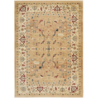 Austin Dark Beige/Cream Area Rug Rug Size: Rectangle 53 x 76