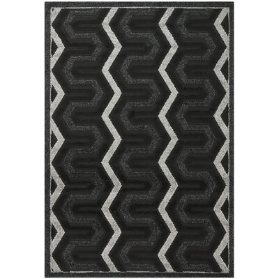 York Black Area Rug Rug Size: Rectangle 53 x 77