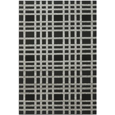 York Black/Gray Area Rug Rug Size: 53 x 77