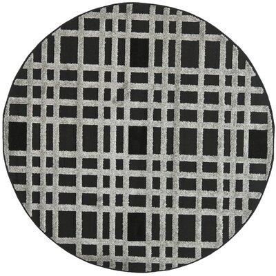York Black/Gray Area Rug Rug Size: Round 6'