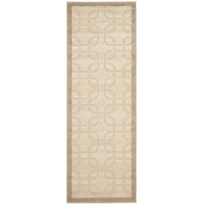 York Brown/Tan Area Rug Rug Size: Runner 24 x 67