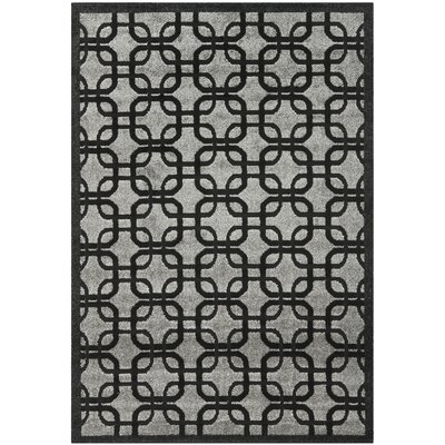 York Gray/ Black Area Rug Rug Size: Rectangle 53 x 77