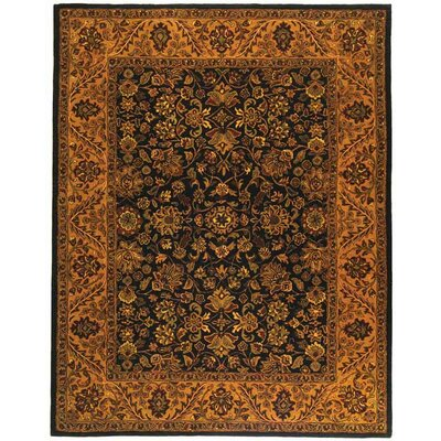 Golden Jaipur Black/Gold Area Rug Rug Size: 9 x 12