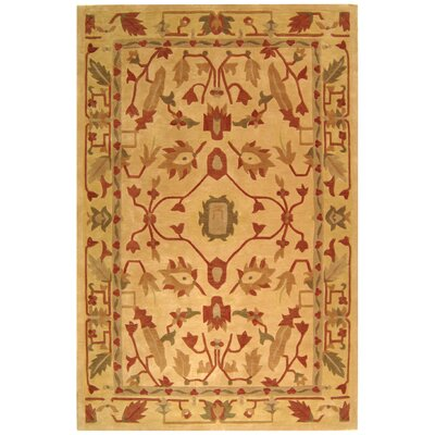 Rodeo Drive Assorted Area Rug Rug Size: Rectangle 2' x 3'