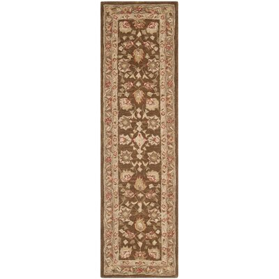 Anatolia Brown/Green Area Rug Rug Size: Runner 23 x 12