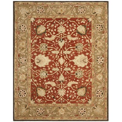 Anatolia Rust/Green Area Rug Rug Size: Rectangle 5 x 8