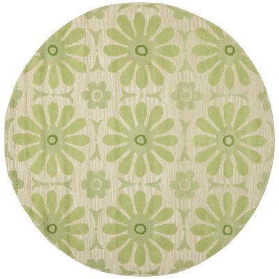 Claro Beige/Green Area Rug Rug Size: Rectangle 2 x 3