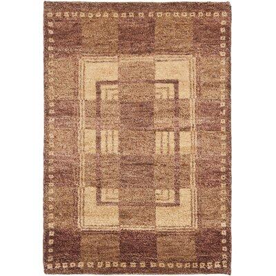 Selaro Assorted Rug Rug Size: 6 x 9