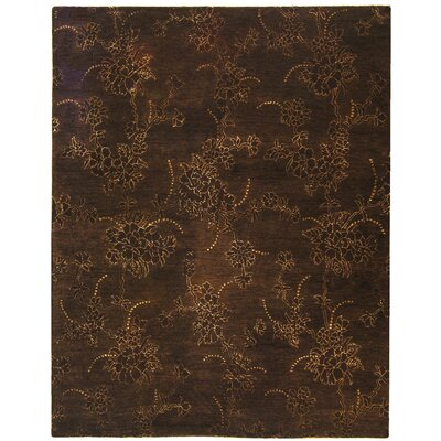 Soho Brown Area Rug Rug Size: 5 x 8