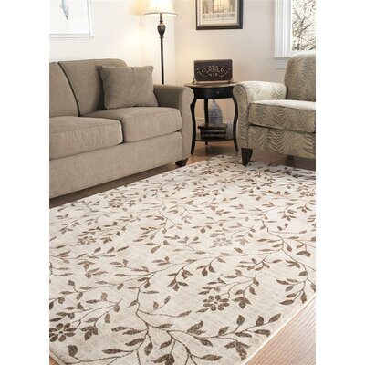 Timeless Fashion Ivory/Brown Rug Rug Size: 8 x 10
