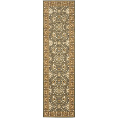 Treasures Blue/Caramel Rug Rug Size: Runner 22 x 8