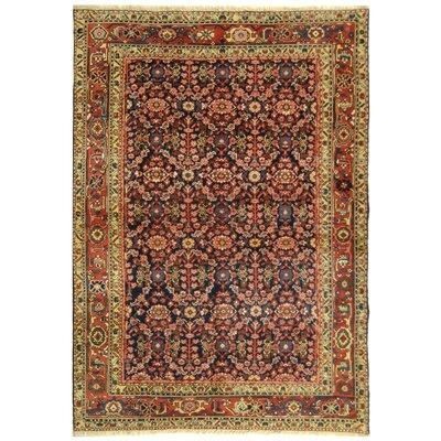 Rectangle: 6 x 9 - Turkistan TRK108C Oriental Rug