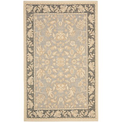 Raabe Light Blue/Espresso Indoor/Outdoor Area Rug Rug Size: Rectangle 53 x 77
