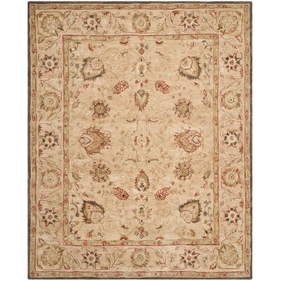 Anatolia Brown Area Rug Rug Size: 96 x 136