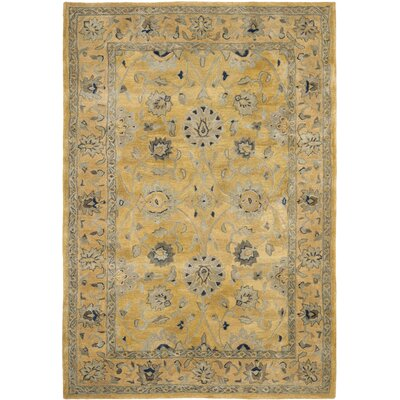 Anatolia Golden Pear/Smoke Area Rug Rug Size: 4 x 6