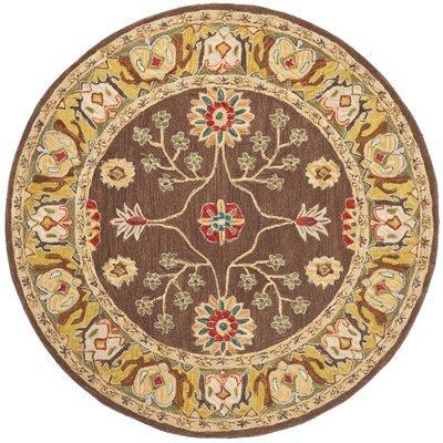 Anatolia Brown/Gold Area Rug Rug Size: Round 6'
