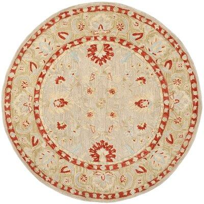 Anatolia Ivory/Green Area Rug Rug Size: Round 6