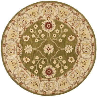 Anatolia Hand-Tufted Yellow/Green Area Rug Rug Size: Round 6