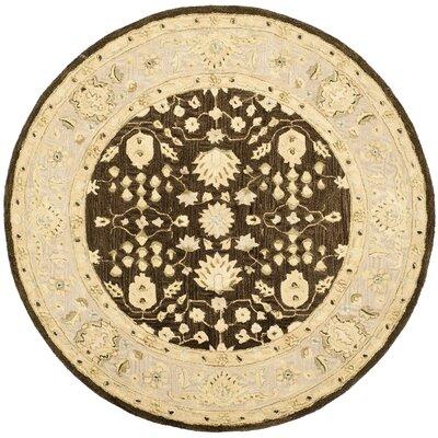 Anatolia Chocolate/Ivory Area Rug Rug Size: Round 6