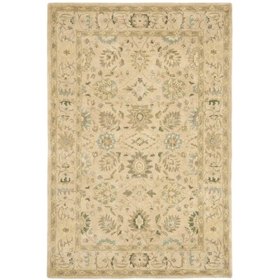 Anatolia Taupe/Blue Area Rug Rug Size: Rectangle 6 x 9