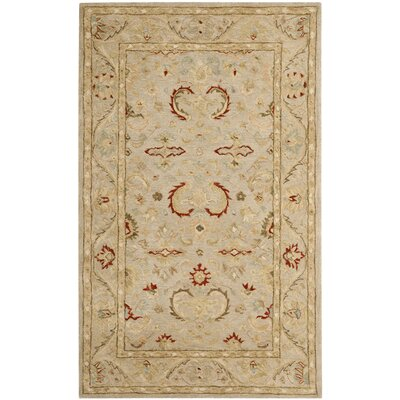Anatolia Beige Area Rug Rug Size: Rectangle 6 x 9