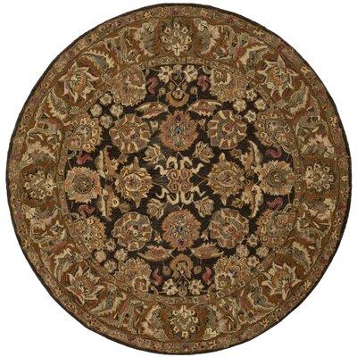 Anatolia Boder Area Rug Rug Size: Round 4