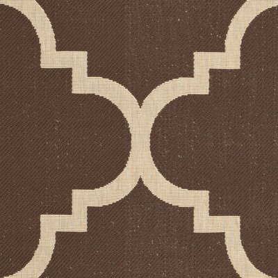 Short Dark Brown Outdoor Area Rug Rug Size: Rectangle 67 x 96