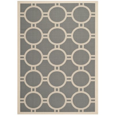 Leslie Anthracite/Beige Indoor/Outdoor Area Rug Rug Size: 23 x 67