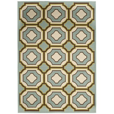 Hampton Green Indoor/Outdoor Area Rug Rug Size: 51 x 77
