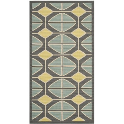 Hampton Dark Grey Outdoor Area Rug Rug Size: Rectangle 67 x 96