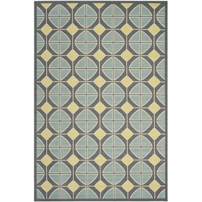 Hampton Dark Grey Outdoor Area Rug Rug Size: 8' x 11'