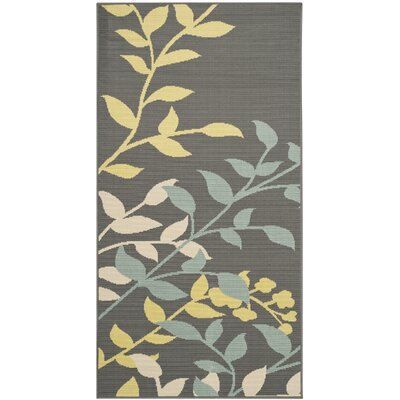 Hampton Dark Grey Outdoor Area Rug Rug Size: Rectangle 51 x 77