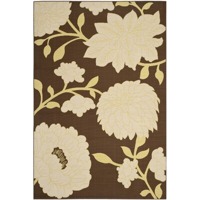 Hampton Brown/Ivory Outdoor Area Rug Rug Size: Rectangle 67 x 96
