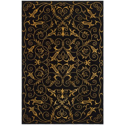 Tibetan Black Rug Rug Size: 8 x 10