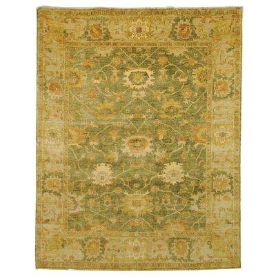 Oushak Green/Beige Area Rug Rug Size: 8 x 10