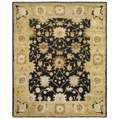 Oushak Black/Light Gold Area Rug Rug Size: 10 x 14