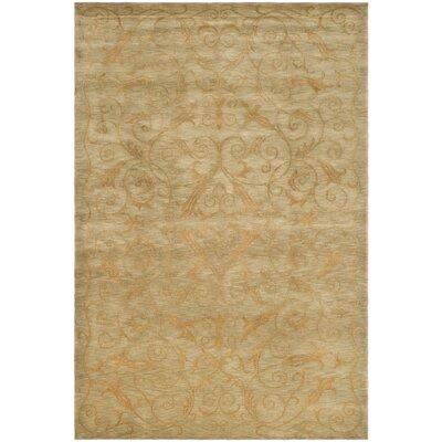 Tibetan Green / Gold Rug Rug Size: 6 x 9