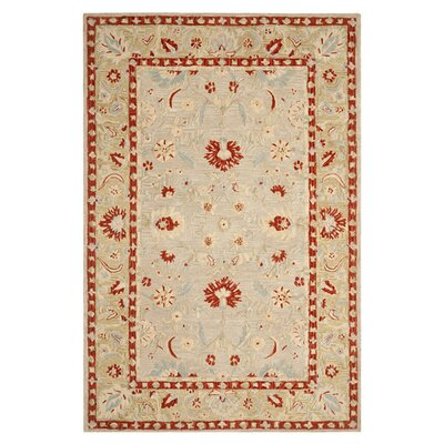 Anatolia Ivory/Green Area Rug Rug Size: Rectangle 5 x 8