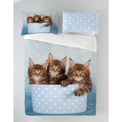 Maine Coon Cats Duvet Cover Set Size: Queen