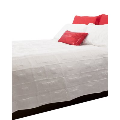 Antlia 3 Piece Queen Quilt Set Color: Ivory