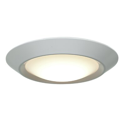 Mini 1-Light Flush Mount