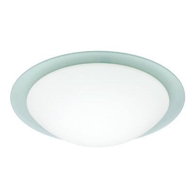 Ring 1-Light Flush Mount Glass Shade: White / Frost