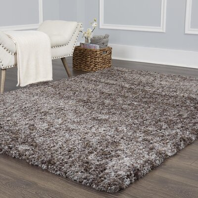 Chelsea Solid Shag Gray Area Rug Rug Size: Rectangle 53 x 72