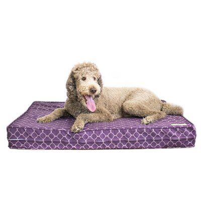Purple 5 Thick Soft/Firm Reversible Gel Memory Foam Orthopedic Dog Bed Size: 5 H x 36 W x 45 D