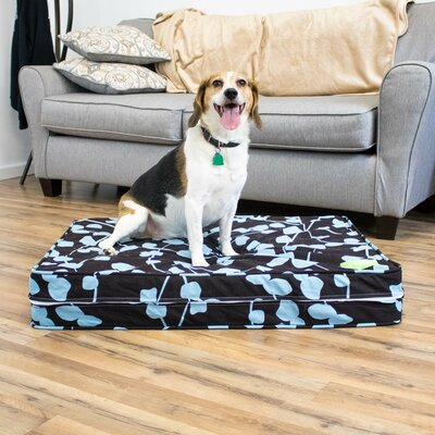 Natural Latex Orthopedic Dog Bed with Waterproof Encasement Size: 5 H x 36 W x 45 D