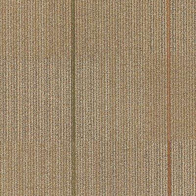 Kearsage 24 x 24 Carpet Tile in Living Fast