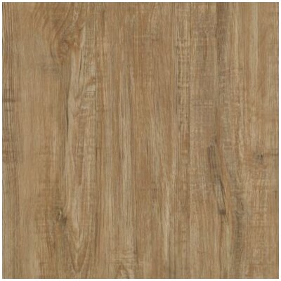 Timbers Path 6 x 48 x 2.5mm Luxury Vinyl Tile in Buckwheat